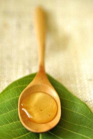 acacia honey Stock Photo - 16480791