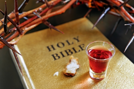 crown of thorns on a bible photo
