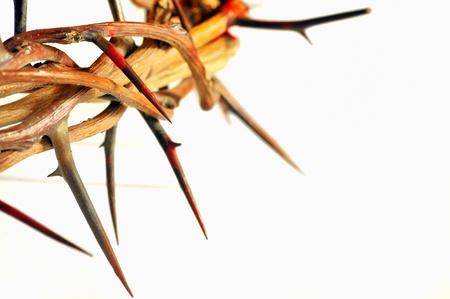 doornenkroon: Kroon van doornen op wit wordt geïsoleerd