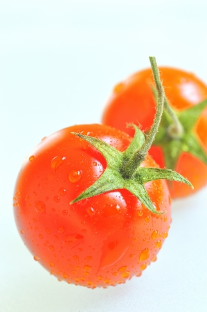 red tomato with water drops Stock Photo - 16480393