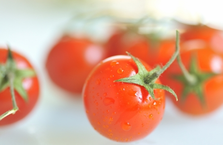 red tomato with water drops Stock Photo - 16480696