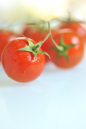 red tomato with water drops photo