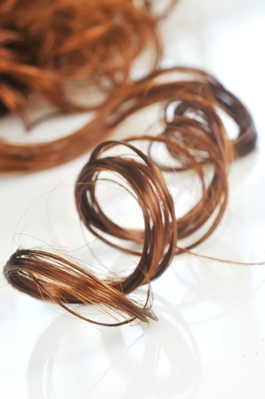 hair curly: rizado pelo blanco