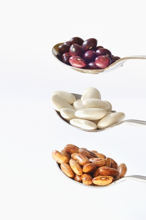 indian bean: different type of beans