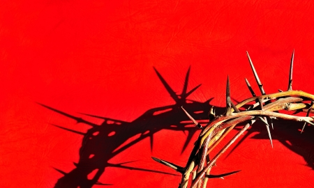 Crown of Thorns Stock Photo - 16526817