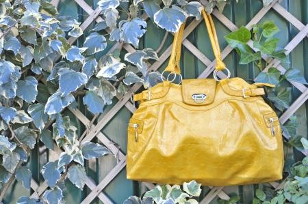 luxury fashion handbag Stock Photo - 16567719