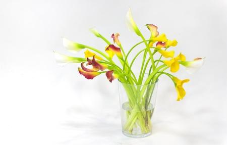 callas on a glass jar photo