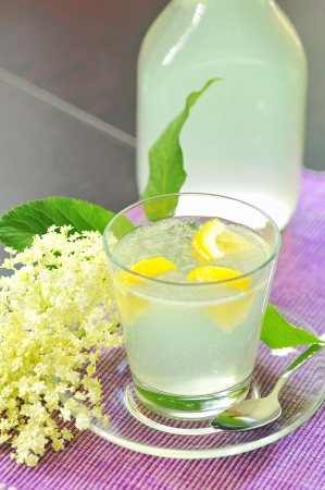 elderflower juice with lemon Stock Photo - 20777368