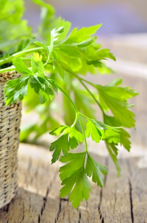 parsley in braided basket isolated Stock Photo - 18160213