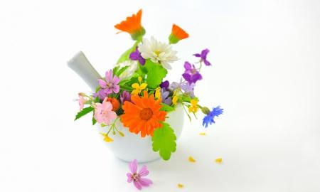 plantas medicinales: Mortero con las hierbas en el fondo blanco