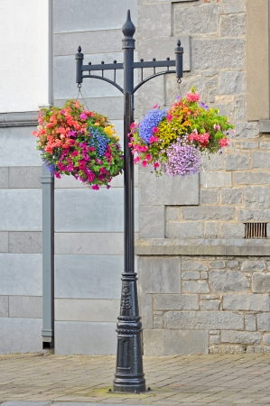 Hanging Flower Basket  shoot in summer time Stock Photo - 18841902