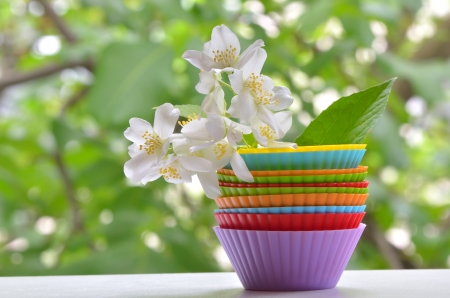 types of muffins with jasmine flower shoot on natural background Stock Photo - 19986143