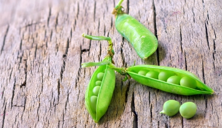 fresh beans broad on wood shoot in studio Stock Photo - 20764457