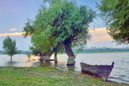 danube delta:  boat on danube river in summer time