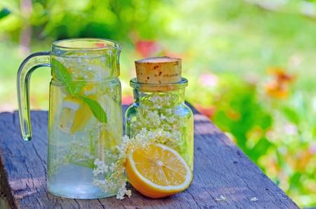 Elderflower and lemon juice shoot in garden Stock Photo - 20764394