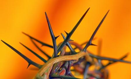 corona de espinas: Corona de espinas sobre fondo naranja, aisladas Foto de archivo