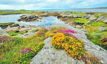 irish coast landscape in summer time Stock Photo - 21451614