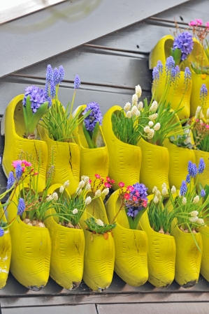 klompen: traditional yellow wooden shoes with colorful flowers in holland