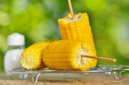 corn boiled on metal support Stock Photo - 21452185
