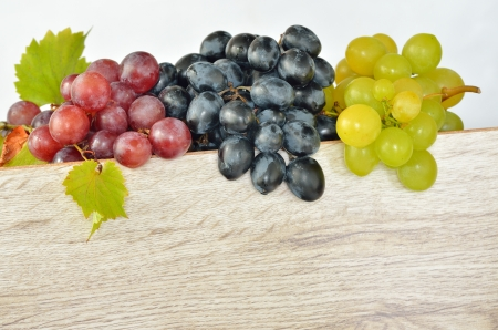 Various types of grapes shoot in studio Stock Photo - 21451840