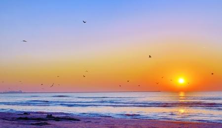 Beautiful sunrise on Black Sea beach in summer time Stock Photo - 21885637