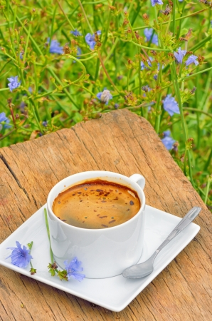 isolated chicory hot drink in white cup on wooden background Stock Photo - 21885677