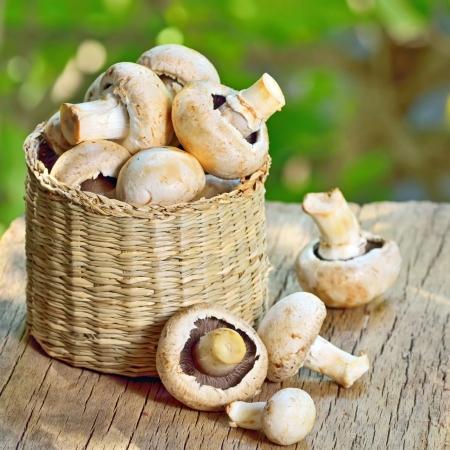 mushrooms in basket shoot in studio Stock Photo