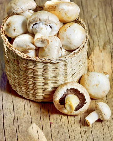 mushrooms in basket shoot in studio Stock Photo - 23000548