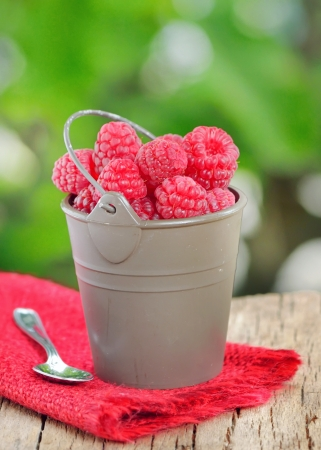 raspberry on old wood shoot in studio Stock Photo - 23812548