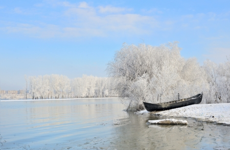 Frosty winter trees near Danube river shoot in the daytime Stock Photo - 23812646