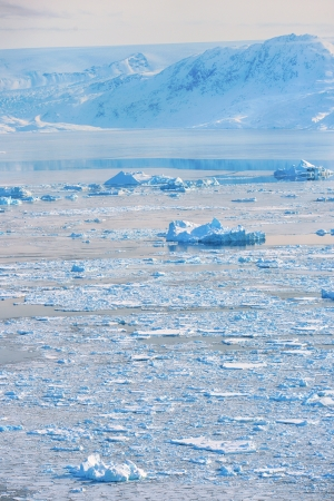 drifting ice: iceberg in spring time in greenland