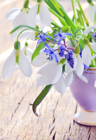 Beautiful bouquet snowdrops in a vase on woody background photo
