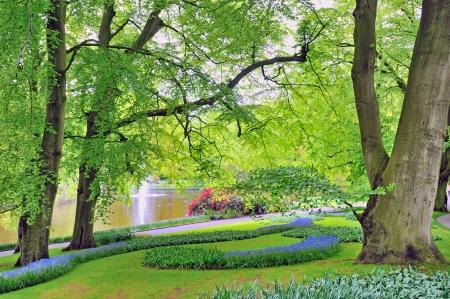 Keukenhof gardens in spring time Stock Photo