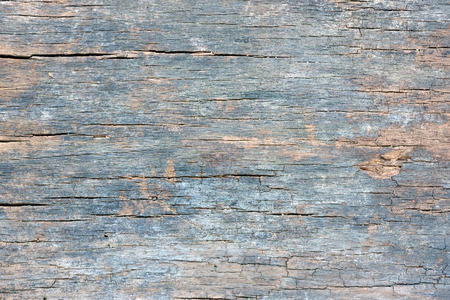 old wood texture and background, detail