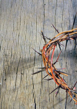 crown of thorns on wooden background photo