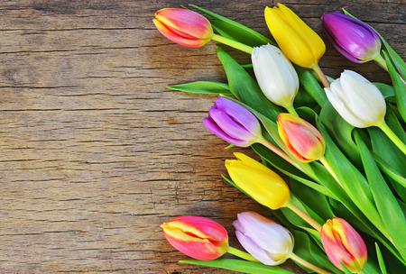 arrangement: bouquet of colorful tulips on rustic wooden board, easter decoration Stock Photo