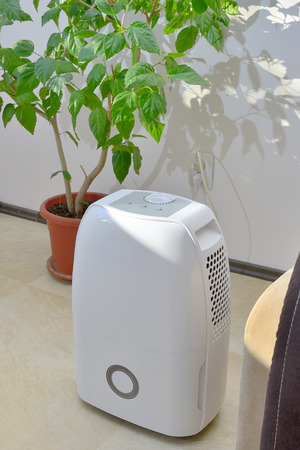 Portable dehumidifier colect water from air inside of living room