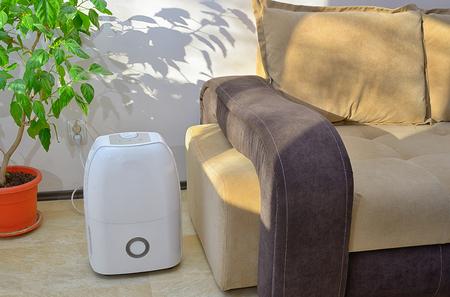 휴대용 제습기는 거실 내부의 공기에서 물을 모으고 있습니다.