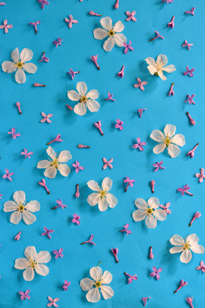 background paper: Spring flowers on paper background