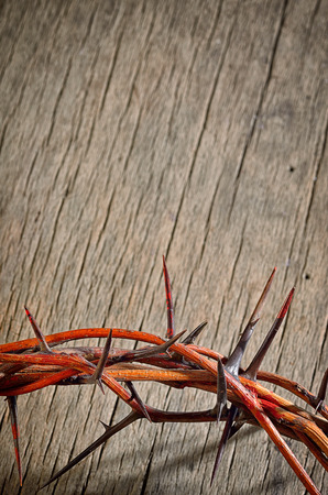Crown of Thorns on wooden background Stock Photo