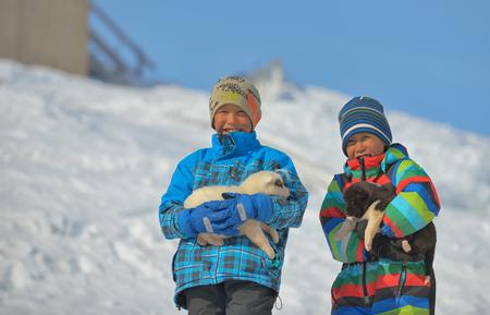 Greenland dog puppies and kids in Kulusuk, Greenland- 07 April 2013