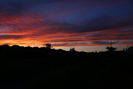 burnt orange sunset over a suburban scene