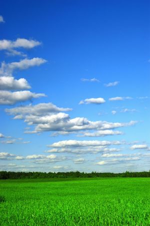 greenfield: Beautiful farmlands with clouds on sun day 3 Stock Photo