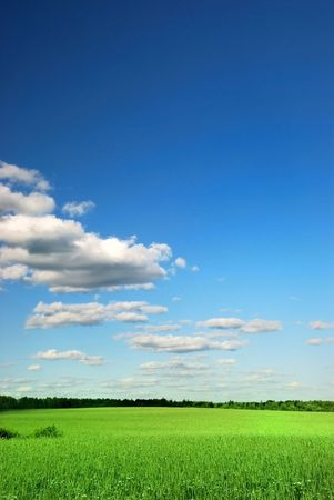 greenfield: Beautiful farmlands with lovely clouds on sun day