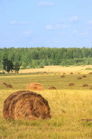Straw bales on farmland with blue cloudy sky Stock Photo - 5389410