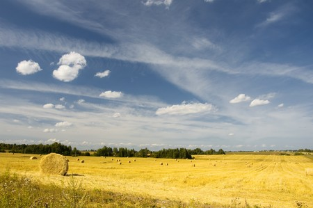amazing golden hay bales on a perfect sunny day photo