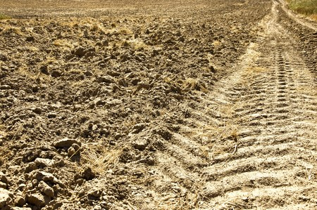 Fresh tractor track in the dirt on field photo