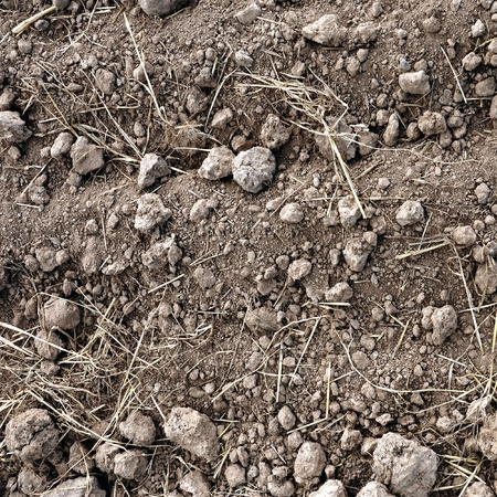 Brown soil of an agricultural field Stock Photo - 8760142