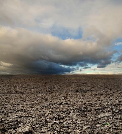 potato field before rain under blue sky landscape Stock Photo - 12450432