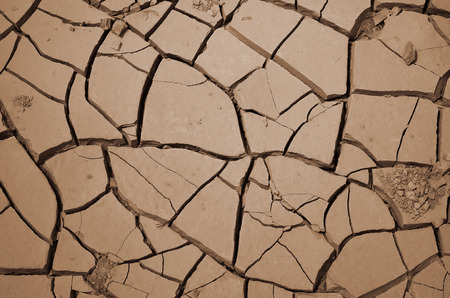 barren land: Closeup of dried and cracked earth Dry soil texture of a barren land